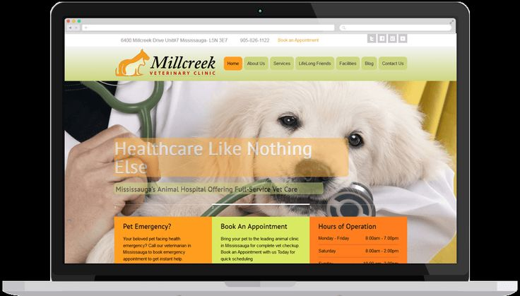 This veterinary website features a coherent WP theme with vet graphics sprinkled along with catchy content. The contact forms and call-to-action bring together a cohesive website with apt visitor attraction.