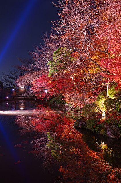 Special Light up in Autumn at Kiyomizu-dera, Kyoto, Japan