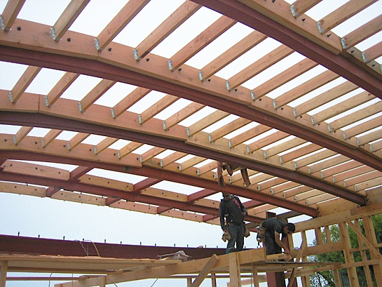 Framing on steel construction, Brion Jeannette Architecture