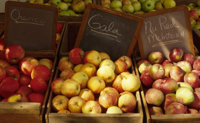 14 Foods To Eat This Harvest Season | Care2 Healthy Living