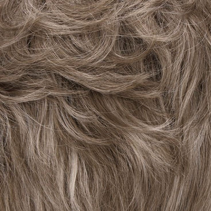 17101  Sugar And Spice  Light Ash BrownPlatinum Ash Blonde Frosted  My V