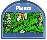 How Plants Grow (Growth Cycles) - Free Educational Games & Activities for Kids