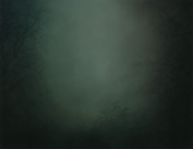 Nicholas Hughes - In Darkness Visible, Verse I.  I worship his work...