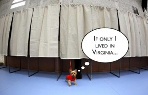 Pets, Children, and Dead People Sent Voter Registration Cards in Virginia : Political Outcast