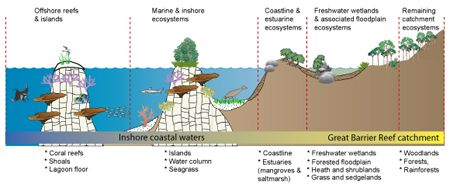 A conceptual illustration of, from left to right, an offshore reef with a coral cay above it, then marine and inshore ecosystems represented by a reef slope, with a vegetated island above it, and to the right a seagrass meadows, then the coastline rising up and to the right of that a freshwater wetland and floodplain, after which the land rises up to a mountain covered with woodland and rain forest. Below the cartoon is a text block illustrating that the offshore reef and island, and the…