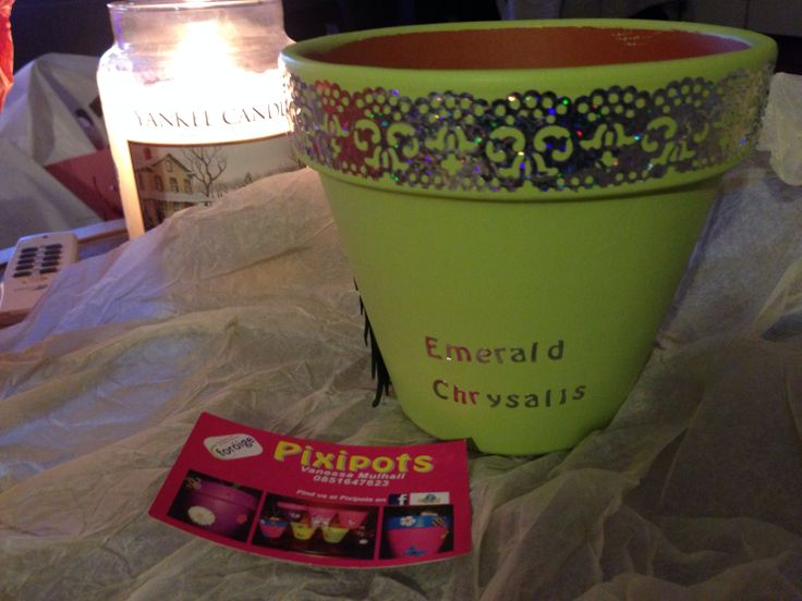 We love #Pixipots at Emerald Chrysalis and especially our festive bespoke one!
