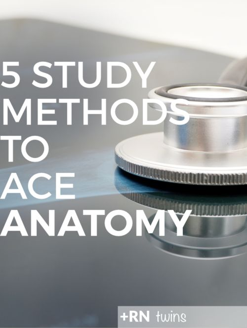Are you overwhelmed with anatomy? Click through to find out which study methods you can begin implementing right away to pass your anatomy course with flying colors!