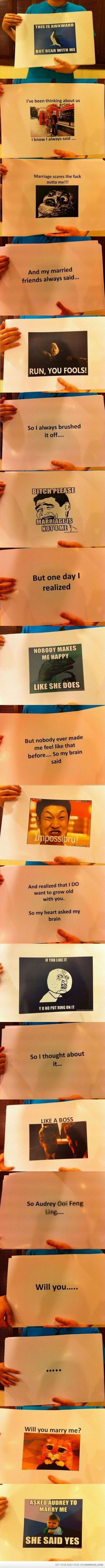 2250 best that which makes me giggle images on pinterest funny