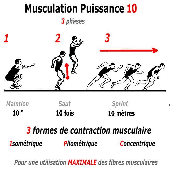 Testez notre programme Musculation Puissance 10 qui associe les 3 types de contraction musculaire, isometrique, pliometrique, concentrique
