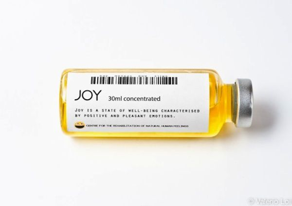 Joy [is a state of well being characterized by positive and pleasant emotions]