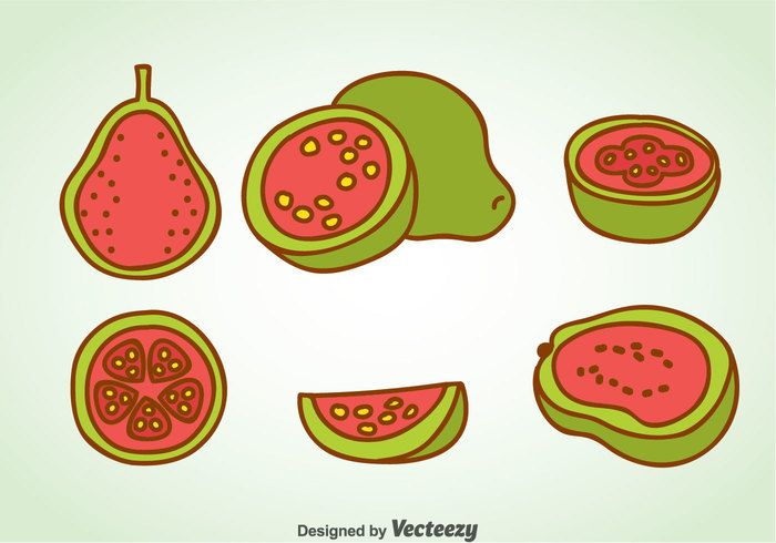 Guava Cartoon Vector - free