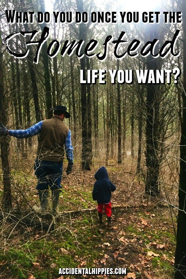 What Next The 5 Important Things We Re Doing After Building A House Homesteading Homesteading Skills Life