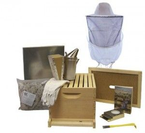 Bee Hive - 8 Frame Standard Beehive Starter Kit and Beekeeping Supplies - Perfect Hives for Beginners and Pro Beekeepers - Beekeeper Kits for Honey Bees, Easy-to-lift Wood Beehives, Quality Equipment - Boxes, Frames, Smoker, Fuel, Veil, and Gloves to Fit Any Bee Suit. QUALITY GUARANTEED or Your Money Back!