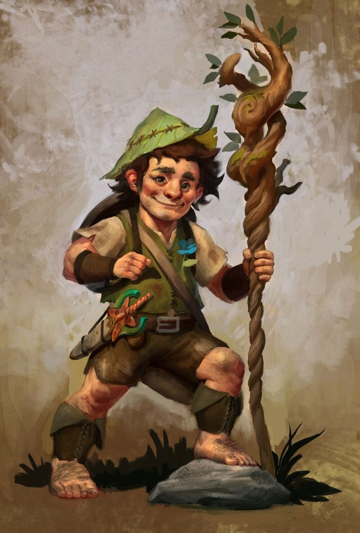 Image Result For Difference Between Gnome And Halfling