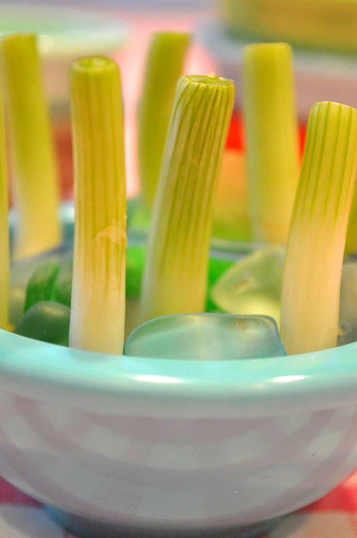Holiday Sparkle: How To Grow Green Onions