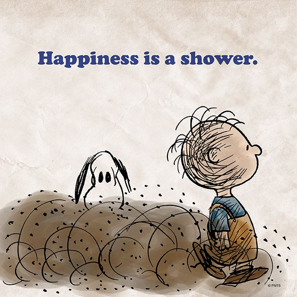 1534 best images about SNOOPY on Pinterest | Peanuts ...