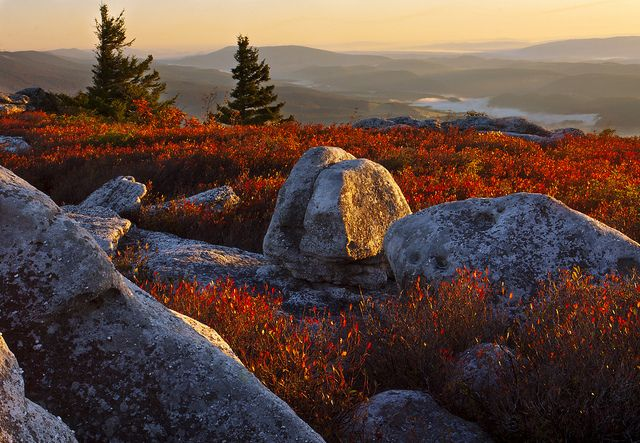Morning Has Broken by Brent McGuirt Photography