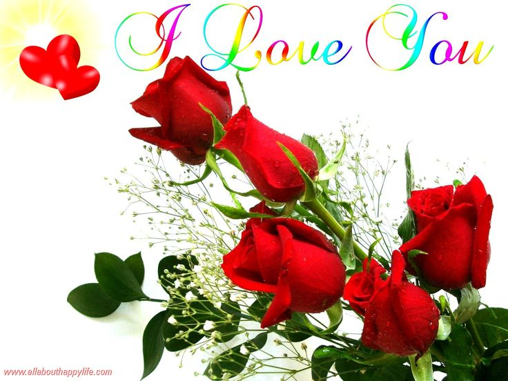 TO LOGAN & FRIENDS, I LOVE Y'ALL! ROSES FOR