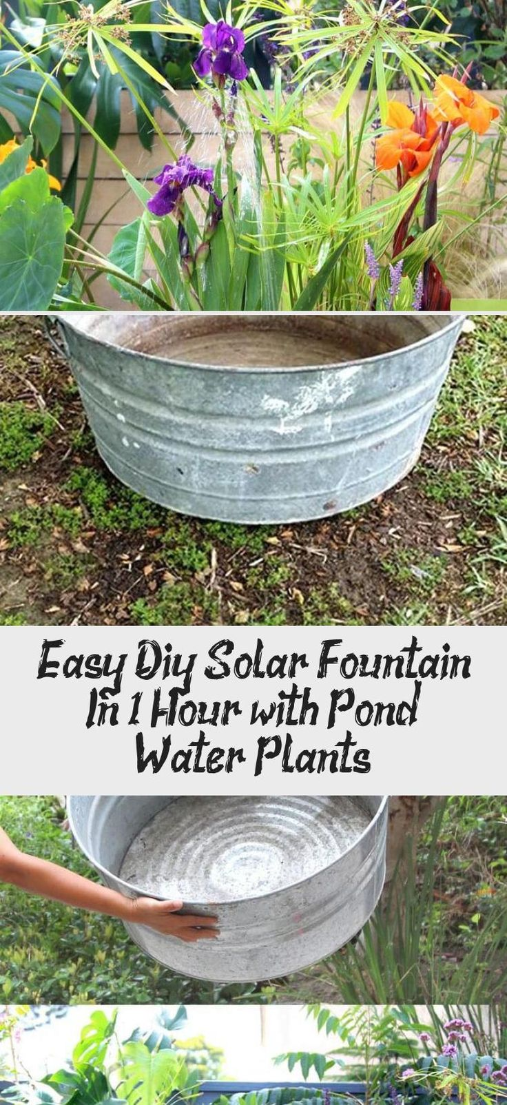 Easy diy solar fountain in 1 hour with pond water plants