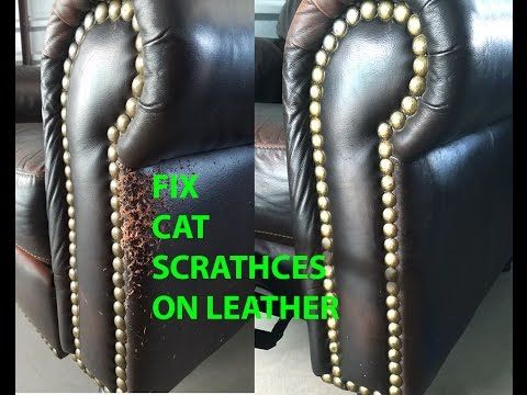CAT SCRATCH LEATHER REPAIR EASY AND QUICK!