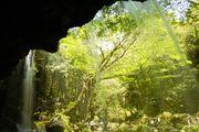 熊本県小国町の鍋ヶ滝に行ってきました。良いお天気でドライブ途中も緑のトンネルに癒されました。 午前10時、明るい光に滝は輝いていました(^・^) ここは2013年松嶋菜々子さん生茶CMの舞台になっているのですね(^^)