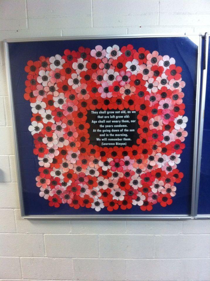 Remembrance poppy display