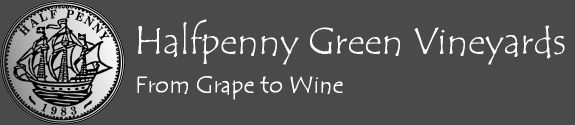 Halfpenny Green Vineyards: Group Tours and Tasting
