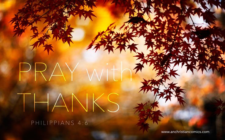 """Happy Thanksgiving! """"Be careful for nothing; but in every thing by prayer and supplication with thanksgiving let your requests be made known unto God."""" -Philippians 4:6"""