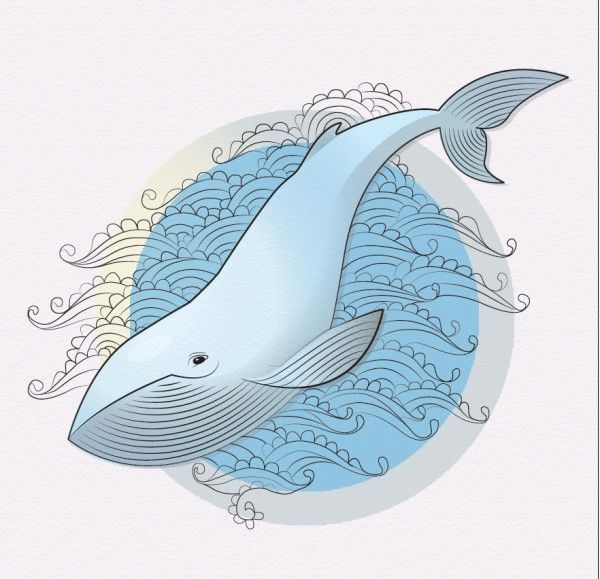 кит рисунок графика - Поиск в Google