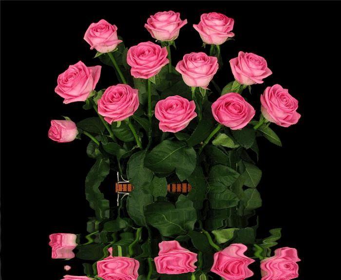 Фото гиф открытки большие цветы, надписью меня