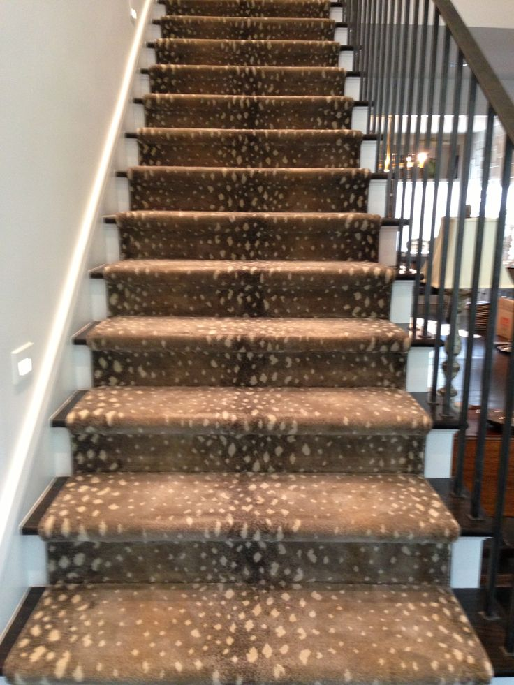 Stark 39 s antelope carpet on stairs flooring pinterest Antelope pattern carpet