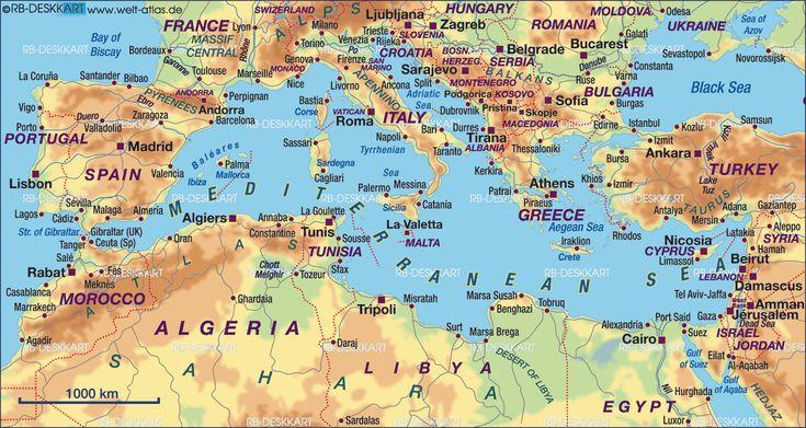 http://izzym.hubpages.com/hub/Mediterranean-Shark-Attacks