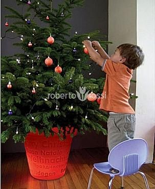 Bloom Christmas tree stand