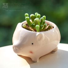 Kawaii Little Animals Ceramic Flowerpot Pink Pig Planter On Sale Cute Succulent Plants Flower Pot Wholesale Price Free Shipping(China (Mainland))