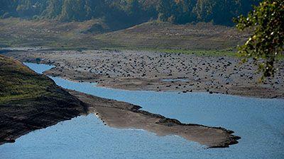 Rekord-Niedrigwasser möglich - Trockenheit hält weiter an Ein Blick auf den wasserarmen Okerstausee bei Schulenburg im Harz. Trotz der relativ niedrigen Füllstände ist die Versorgung der Bürger aber nicht gefährdet. Bild: dpa