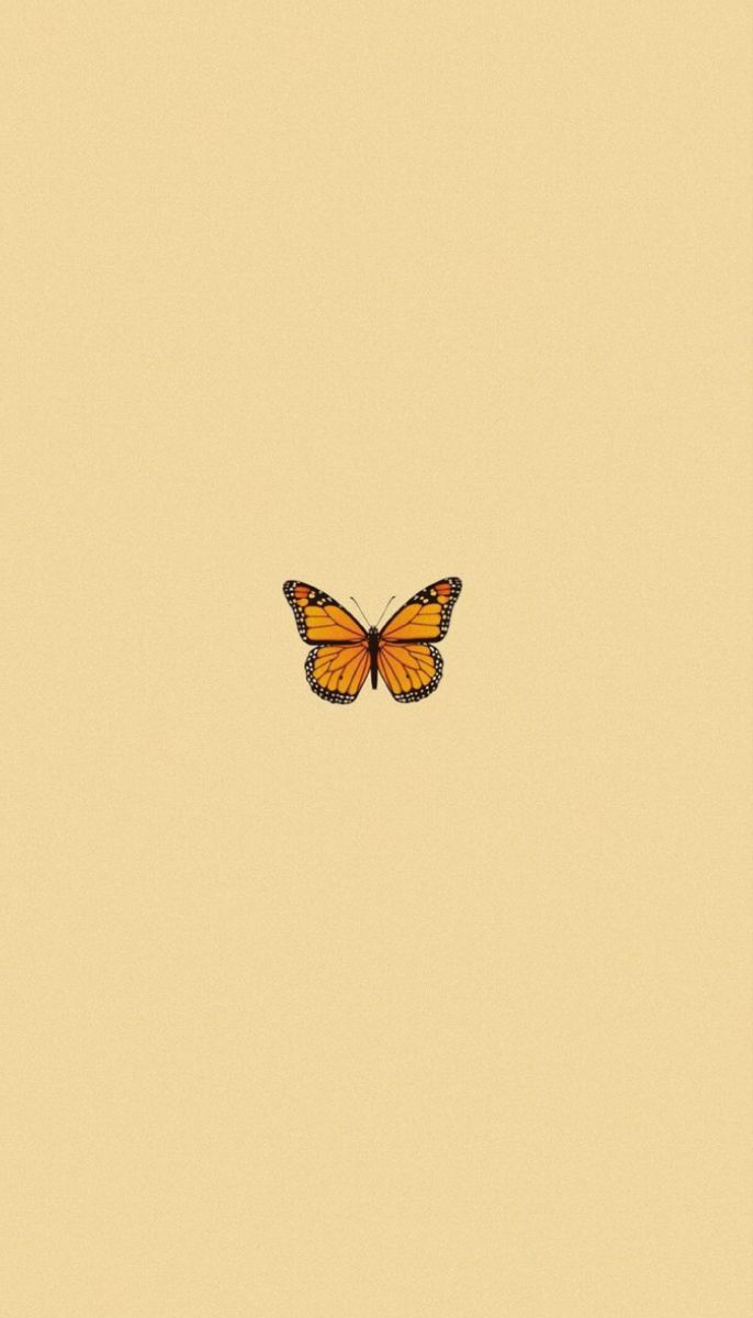 Wallpaper In 2020 Butterfly Wallpaper Iphone Iphone Wallpaper Yellow Butterfly Wallpaper