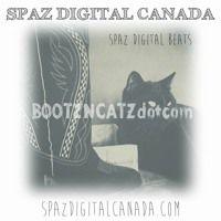 BOOTZNCATZdotcom (EDM/House/Pop Beats) by SPAZ Digital Beats on SoundCloud