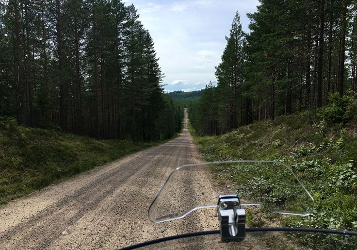 https://flic.kr/p/PXrMBE | Swedish woods 2016 | Deep into the woods close to the border between Norway and Sweden :)