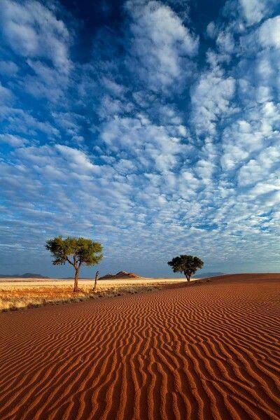 Namib. Photo Hougaard Malan.