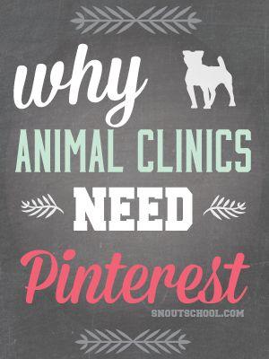 veterinary hospitals need pinterest - pinning tips for veterinarians