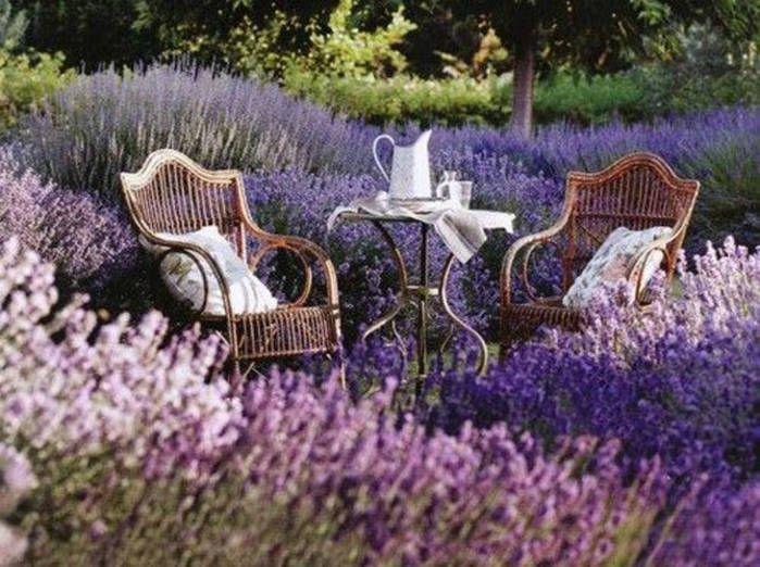Un Salon De Jardin En Anglais Les Cabanes De Jardin Abri De Jardin Et Tobbogan Lavande Jardin Jardin Anglais Jardins