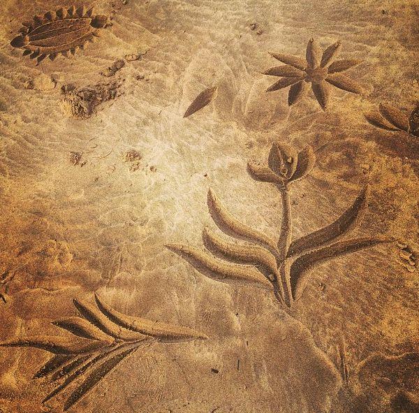 INSTAGRAM 18 Aug. Vanessa van Vreden Photography. Beach Calligraphy. Site_Specific #LandArtBiennale in #Plett. #LandArt