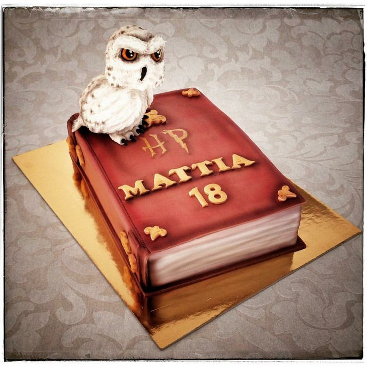 Amazing Harry Potter Cake - the best cake design -bolo de bolas  - fantasy cake - 18st birthday cake