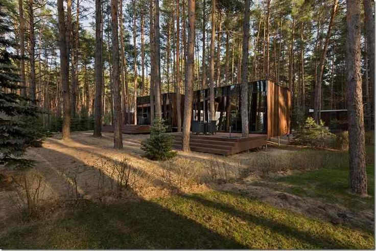 Гостевые домики из бруса на фоне украинских лесов