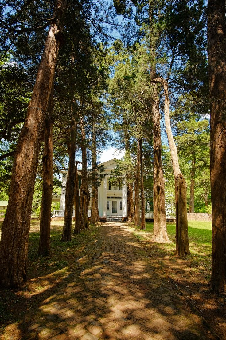 Home to William Faulkner and his family for over 40 years, Rowan Oak was originally built in 1844, and stands on over 29 acres of land just south of the Square in Oxford, MS.