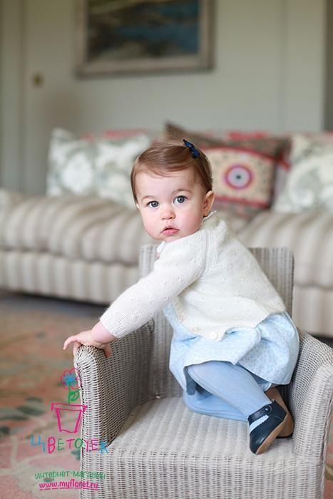 Принцесса Шарлотта   Дочь герцога и герцогини Кембриджских, правнучка королевы Елизаветы II, получила имя Шарлотта Елизавета Диана. Имя Шарлотта Кейт и Уильям выбрали в честь принца Чарльза, второе имя было дано в честь прабабушки королевы Елизаветы, а третье в честь бабушки принцессы Дианы. У принцессы есть старший брат принц Джордж.  Принцесса Шарлотта стала настоящим трендсеттером, законодателем детской моды с самого рождения! Эффект принцессы проявляется мгновенно: через несколько минут…