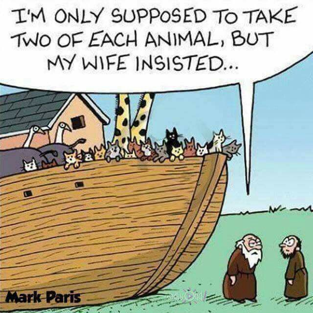102 Best Images About Christian Humor On Pinterest God Church And Christian Humor