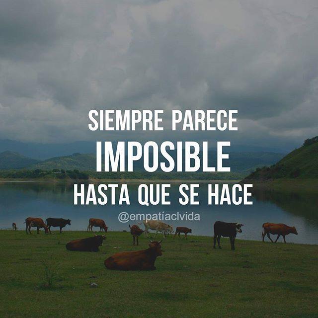 Si se puede!
