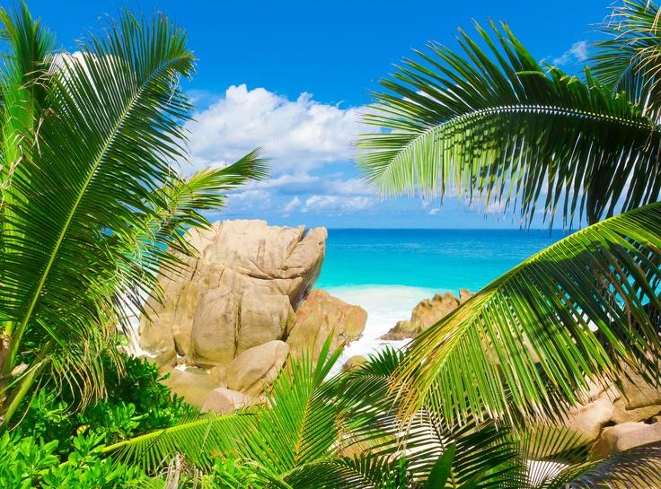 Caribbean Soul: 17 Best Images About Yacht Charters Caribbean On Pinterest