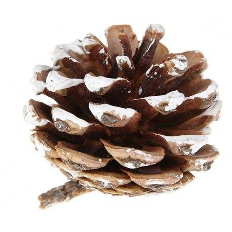 Petite pomme de pin déco effet neige 4 cm les 6